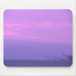 Flying free in Chicago Mouse Pad