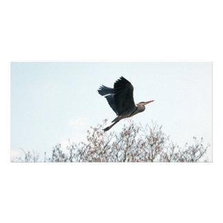 Flying Grey Heron Custom Photo Card