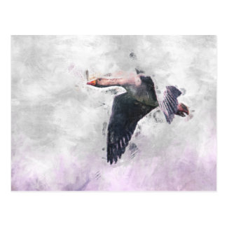 Flying Greylag Goose Postcard
