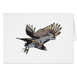 Flying Hawk Illustration Greeting Card