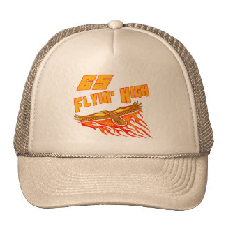 Flying High 65th Birthday Gifts Cap