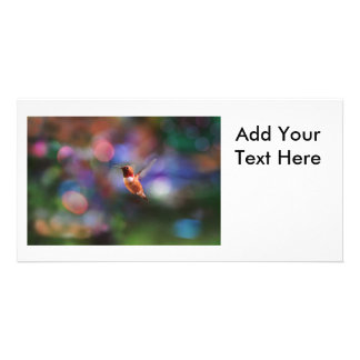 Flying Hummingbird and Colorful Background Photo Card