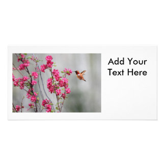 Flying Hummingbird and Flowers Photo Card