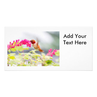 Flying Hummingbird and Flowers Picture Card