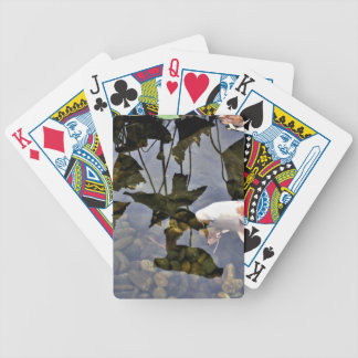 Flying Koi Bicycle Playing Cards