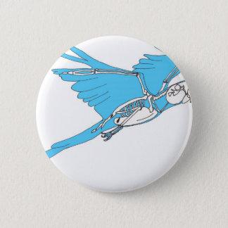 Flying macaw skeleton 6 cm round badge