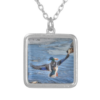 Flying Mallard Drake Wildlife Gift Silver Plated Necklace
