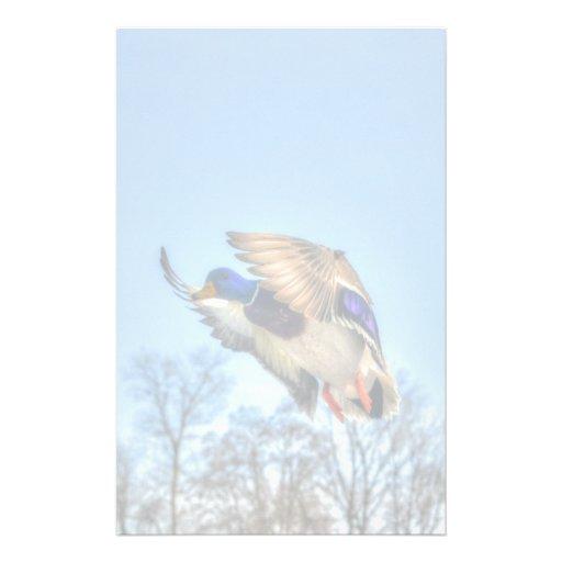 Flying Mallard Duck Drake Wildlife Photo Stationery Paper