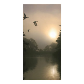 Flying Mallards and Morning Fog Custom Photo Card