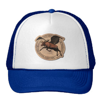 Flying Moose Aviation Patch Cap