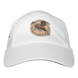 Flying Moose Aviation Patch Hat