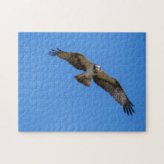 Flying osprey with a target in sight jigsaw puzzle