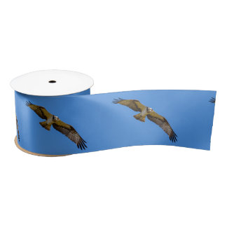 Flying osprey with a target in sight satin ribbon