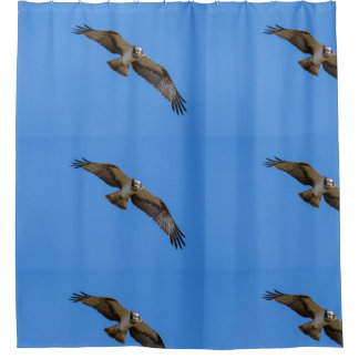 Flying osprey with a target in sight shower curtain