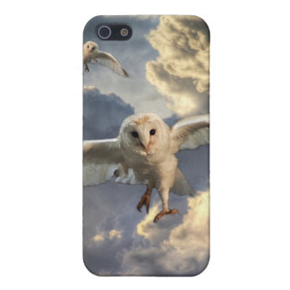 flying owl ipod toch case iPhone 5 cases