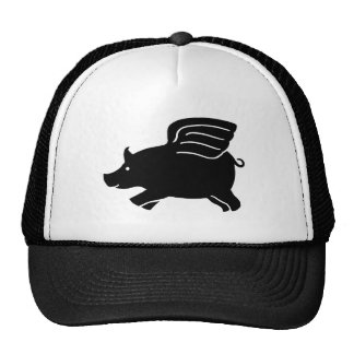 Flying Pig - Black Cap