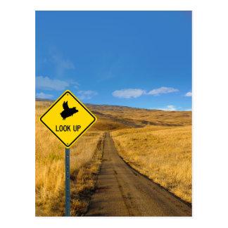 Flying Pig Road Sign Postcard