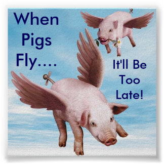 Flying Pigs, When Pigs Fly...., It'll Be Too Late! Poster