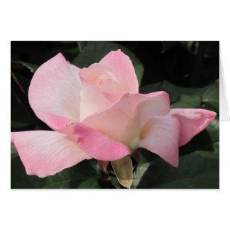 Flying pink rose card