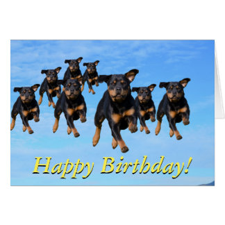 Flying rottweilers card
