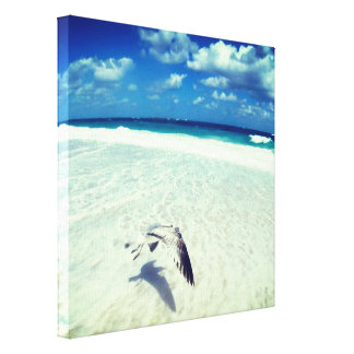 Flying Seagull At The Beach Canvas Print