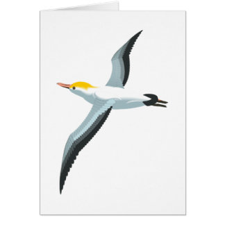 Flying Seagull Card