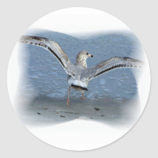 Flying seagull posterized round sticker