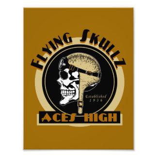 Flying Skullz Aces High Airborne Paratrooper Skull Art Photo