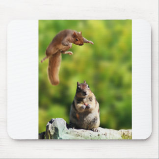Flying squirrel mouse pads