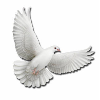 Flying White Dove Pin Photo Sculpture Badge