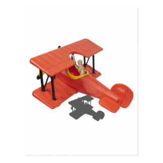 FlyingBiPlane110510 Postcard