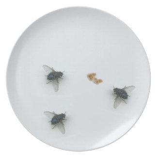 Flys Dinner Plate