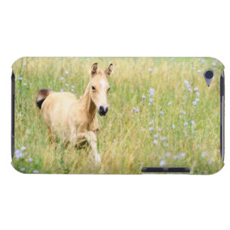 Foal and Flowers iPod Touch Case-Mate Case