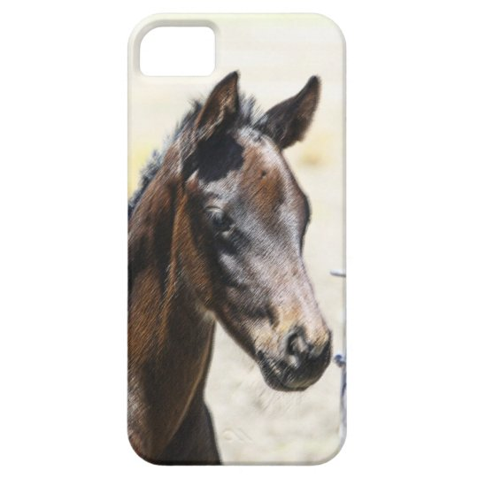 Foal iPhone 5 Cover