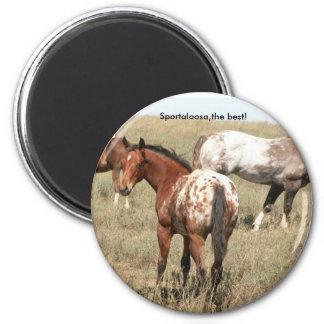 foals 6 cm round magnet
