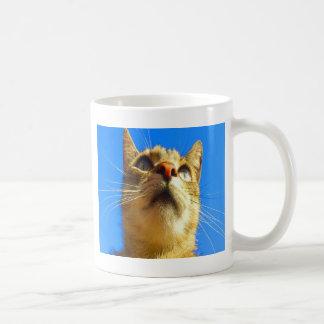 Focus on goal and success cat mugs