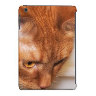 Focused Humane Society cat iPad Mini Retina Covers