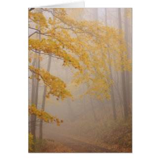 Fog and Autumn foliage, Great Smoky Mountains Greeting Card
