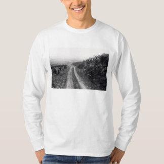 Fog in the Vineyard T-Shirt