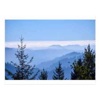 Fog Lifting Postcard