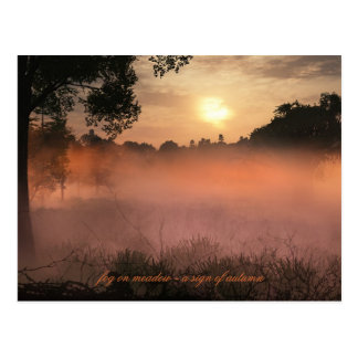 fog on meadow postcard