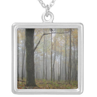 Fog Thru the Trees Necklace