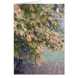 Foggy Autumn Day Notecard Note Card