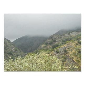 Foggy Day - Coastal Hwy 1 California Photo Print