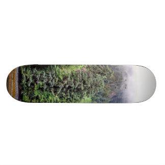 Foggy Forest Skateboard