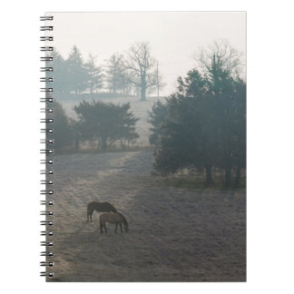 Foggy Grazing Notebook