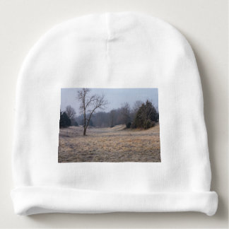 Foggy Meadow Baby Beanie