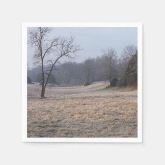 Foggy Meadow Disposable Serviettes
