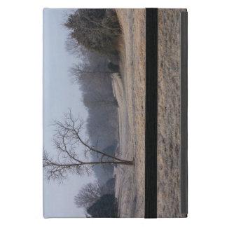 Foggy Meadow iPad Mini Cases
