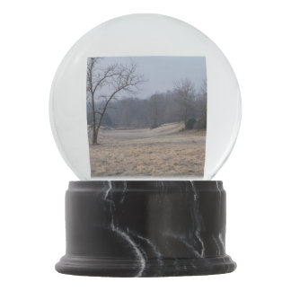 Foggy Meadow Snow Globes